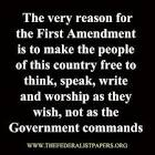 Big First Amendment